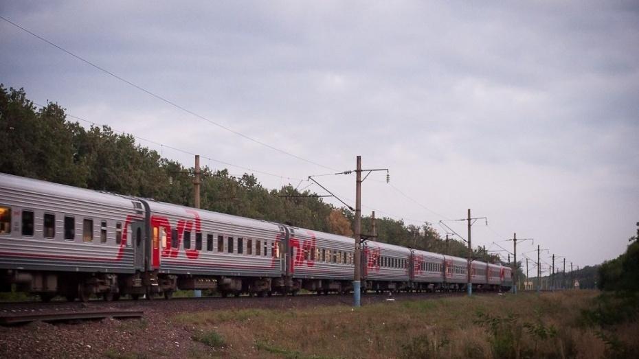 В Воронежской области из-за технических проблем задержали 6 пассажирских поездов