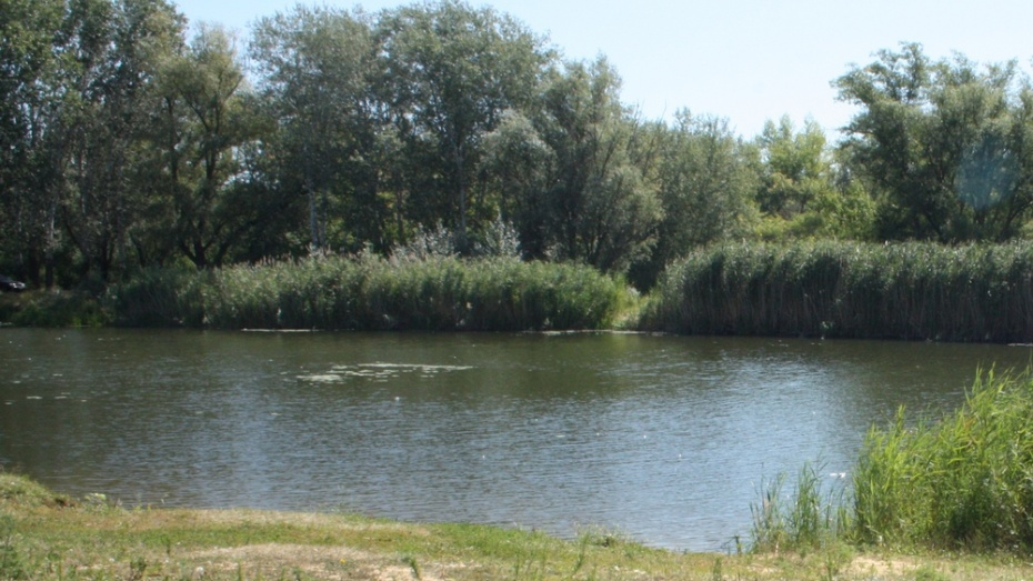 В Воронежской области утонул 40-летний мужчина