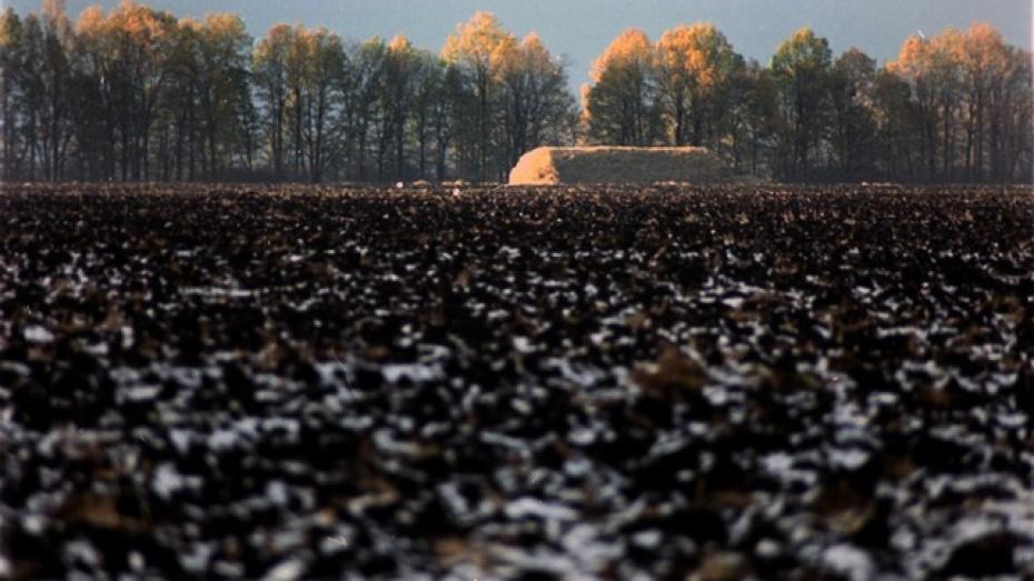 Острогожский фермер выбросил плодородную почву
