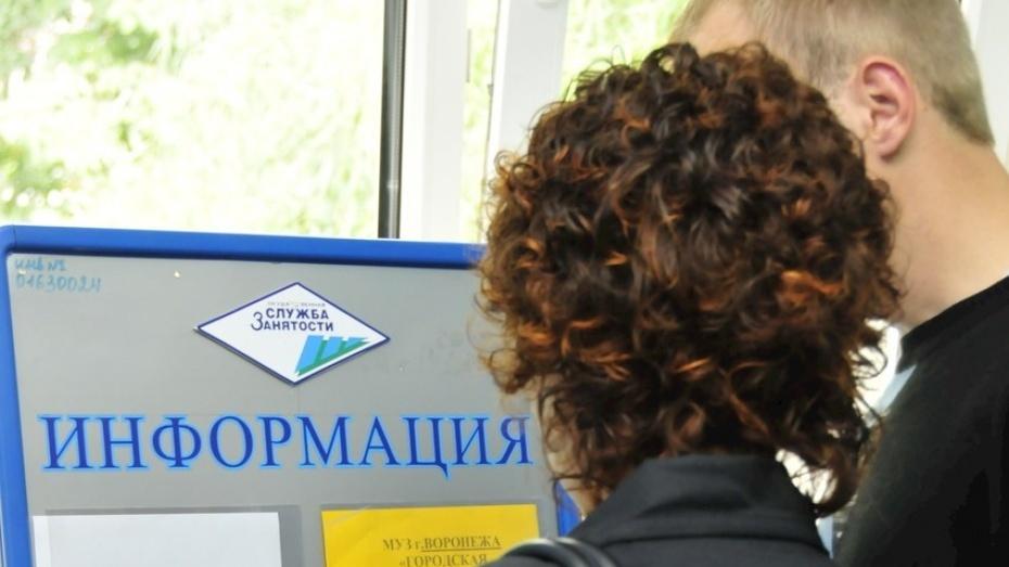 Власти Воронежской области найдут работу для 65 тыс человек в 2015 году