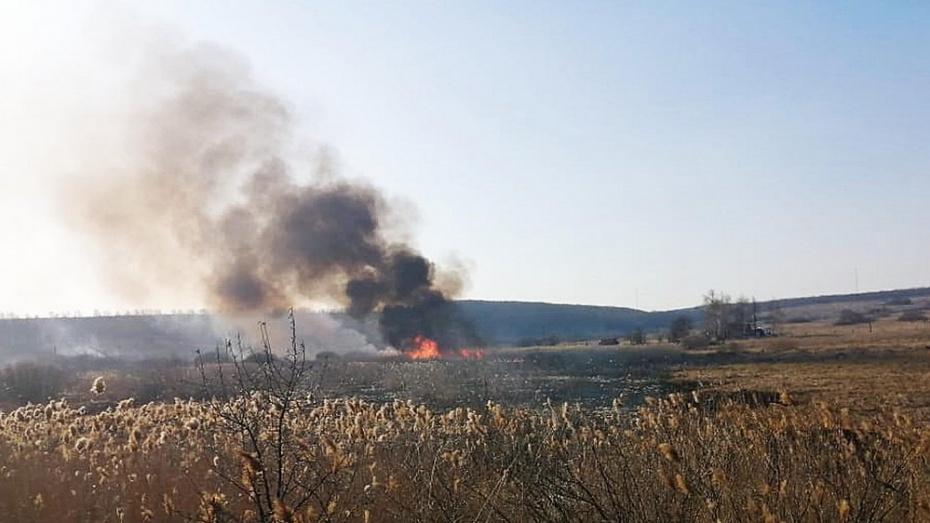 В Бутурлиновском районе при сжигании сухой травы пострадала 80-летняя пенсионерка