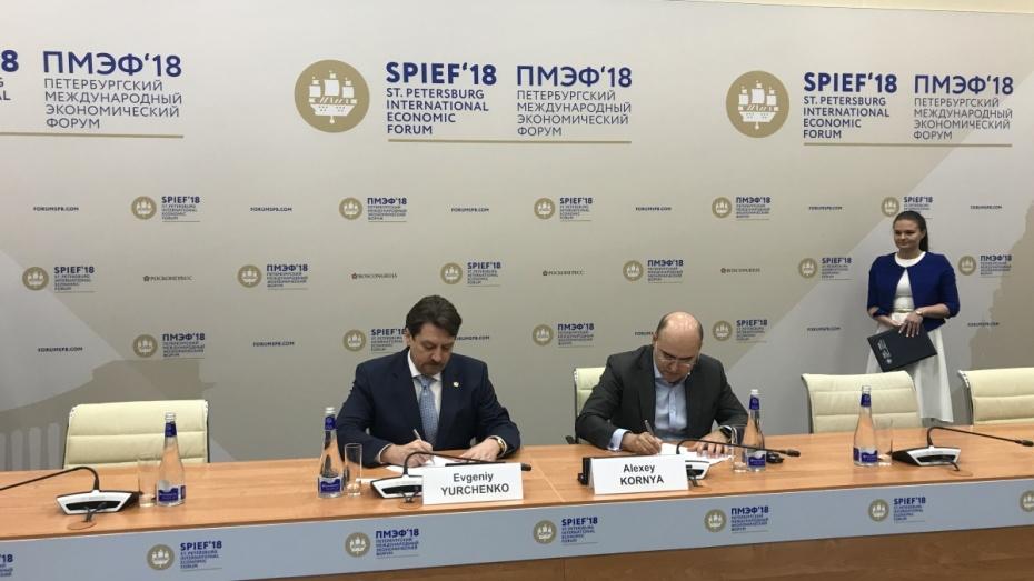На развитие инновационных цифровых сервисов в Воронежской области направят 800 млн рублей