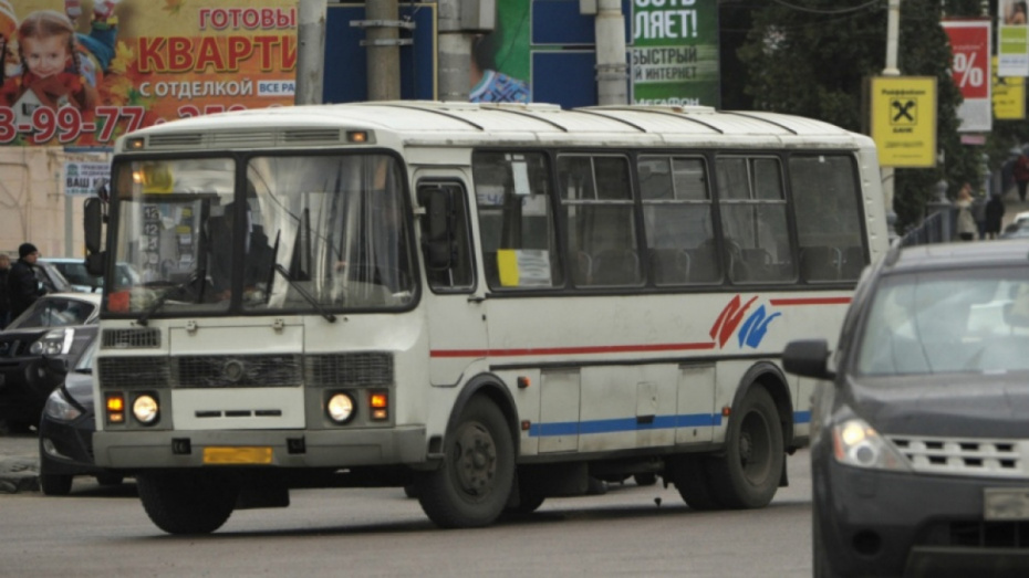 В Воронежской области перевозчикам дадут 120 дней на получение лицензии