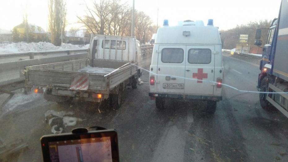 Навидео попал момент массового ДТП под Воронежем, вкотором пострадали телята