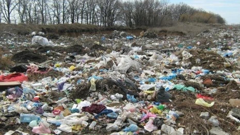 В Бутурлиновском районе на землях сельхозназначения устроили свалку