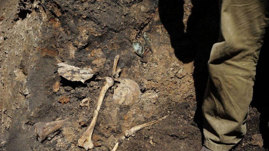 Поисковики нашли в Воронеже потомков погибшего под Брянском красноармейца