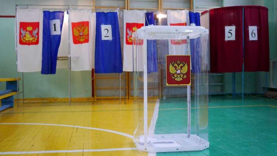 Под Воронежем наблюдателя на выборах забрали с участка в полицию
