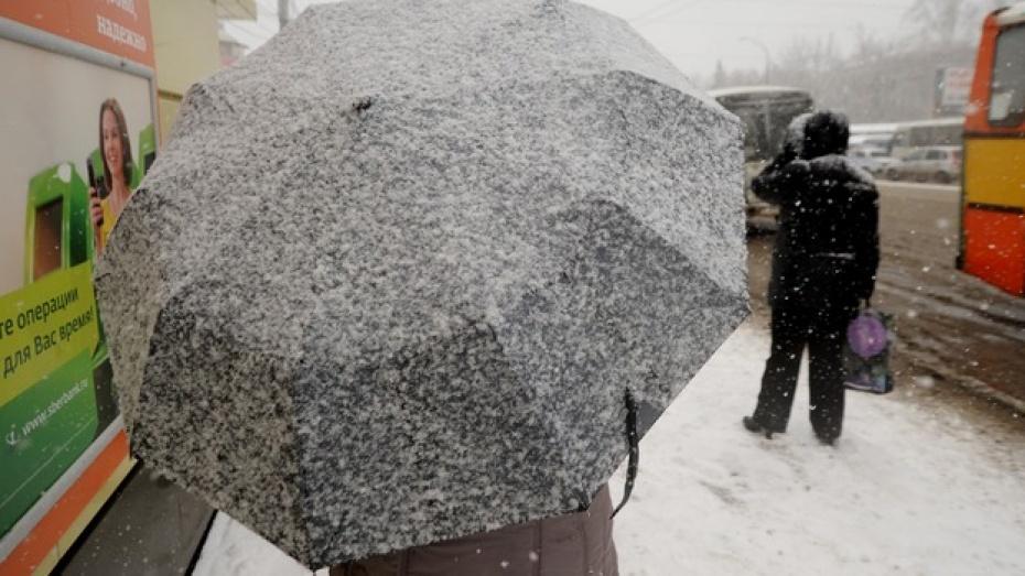 Желтый уровень погодной опасности в Воронежской области продлили до вечера 28 января