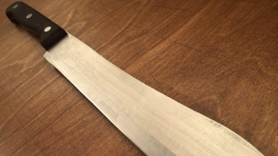 Жительница Лисок ударила сожителя ножом в грудь