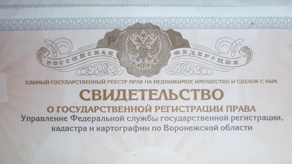Амурское областное отделение ВДПО. Всероссийское