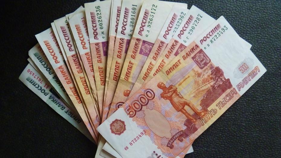 Жительница Воронежа требует ужесточить закон о микрозаймах