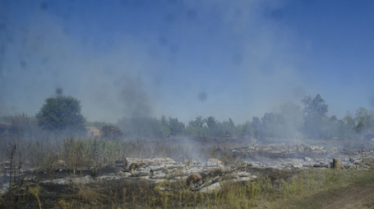 В селе Нижний Мамон сгорела частная свиноферма