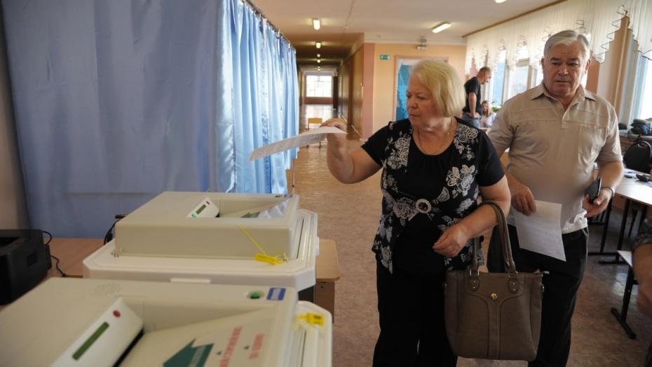 Партия «Яблоко» определилась с кандидатами в Госдуму от Воронежской области