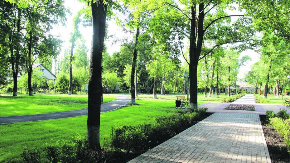 В Новоусманском районе открыли 2 парка