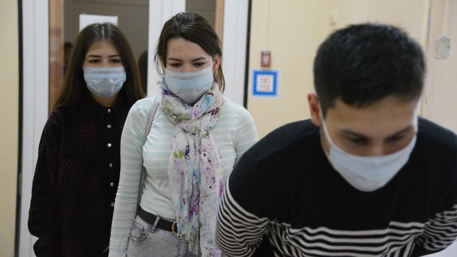 В Воронежской области за сутки от коронавируса вылечили 16 человек