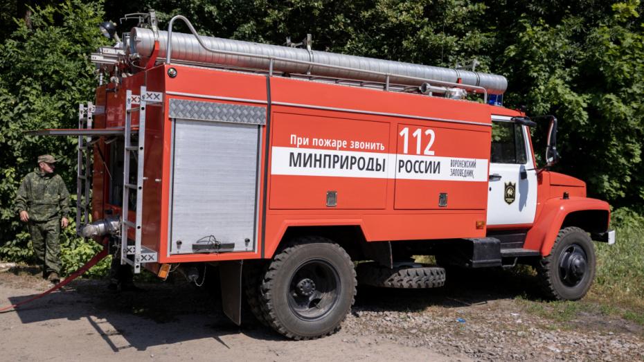 В Воронежском заповеднике потушили быстро распространявшийся пожар