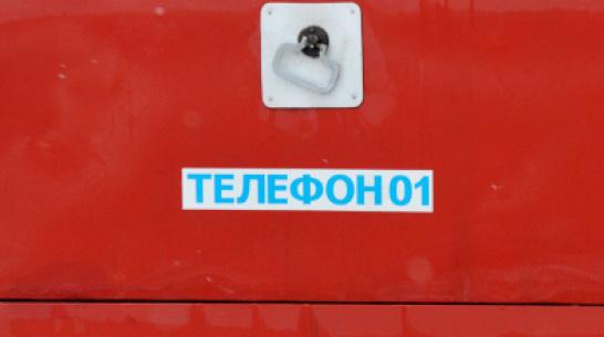 При пожаре в Воронежской области погиб 50-летний хозяин дома