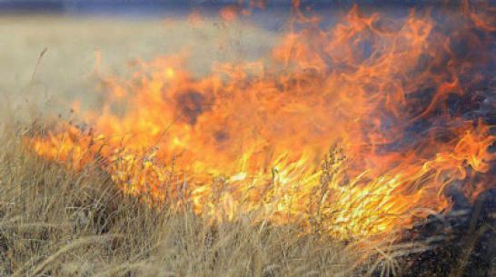 В Верхней Хаве произошло 8 пожаров с 4 по 11 сентября