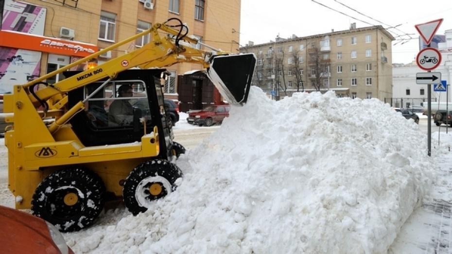 Уборка дворов Воронежа от снега не удовлетворила исполняющего обязанности мэра