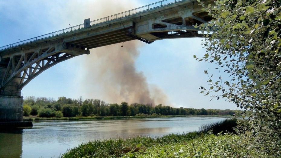 В Верхнемамонском районе увеличилось количество ландшафтных пожаров