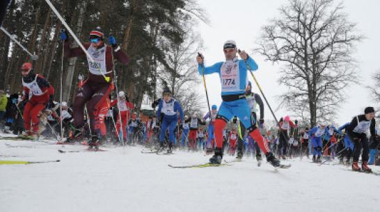 Воронежцев пригласили на гонку «Лыжня России» 9 февраля