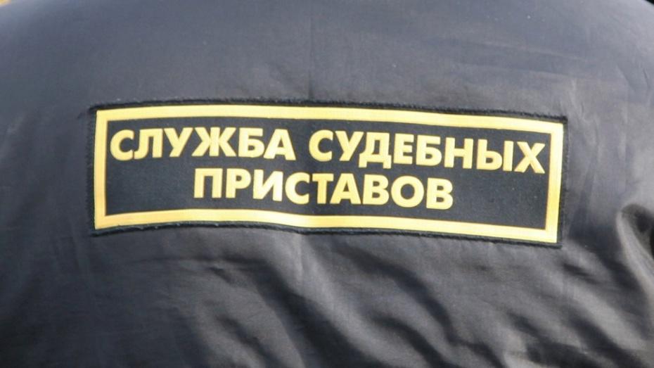 За долг в 200 тыс рублей судебные приставы забрали у жительницы Воронежа шкаф