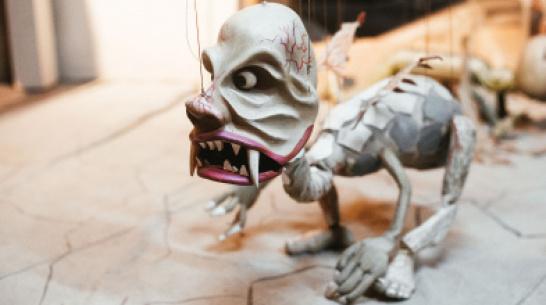 В Воронеже из-за угрозы коронавируса приостановили работу 2 детских театра