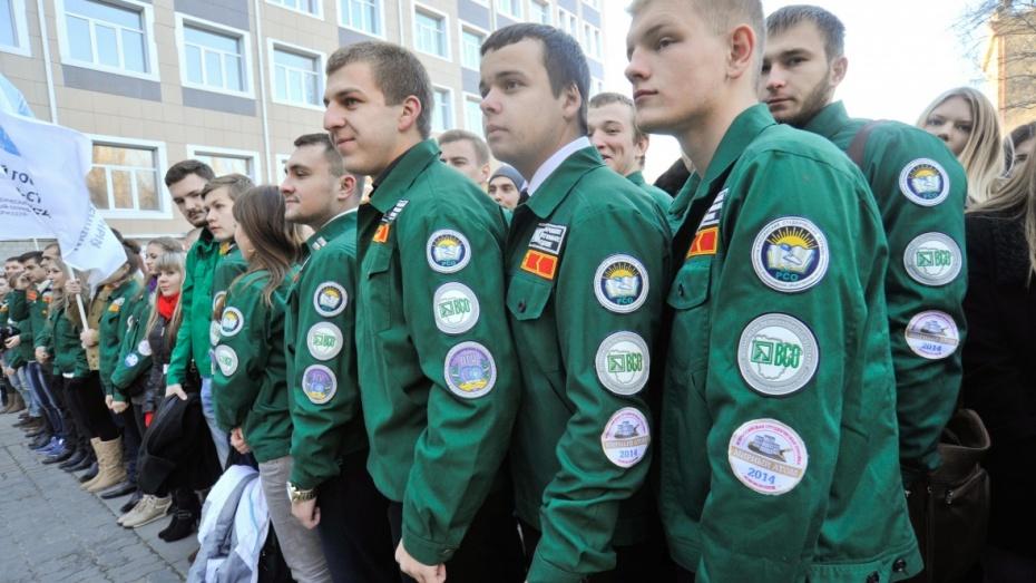 Воронежские студотряды попросили работу у местного бизнеса