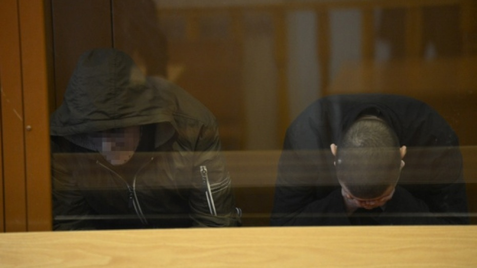 В Воронеже трое парней получили от 9,5 до 15 лет за казнь человека в парке «Танаис»