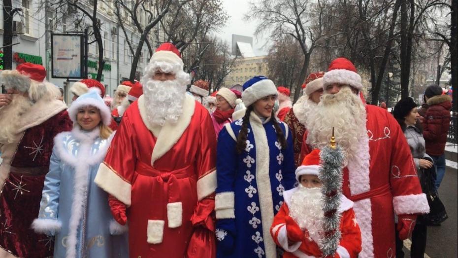 500 рязанских Дедов Морозов, лимузин, олени ихаски
