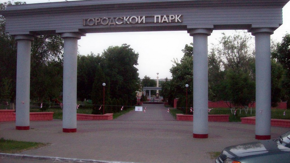 Богучарский городской парк избавили от клещей