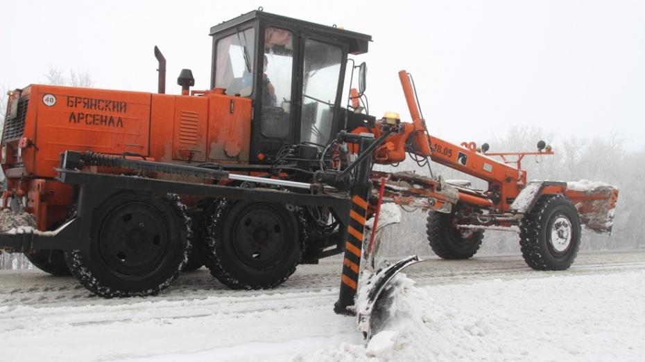 В Воронежской области дорожники бросили на ликвидацию снегопада 99 машин