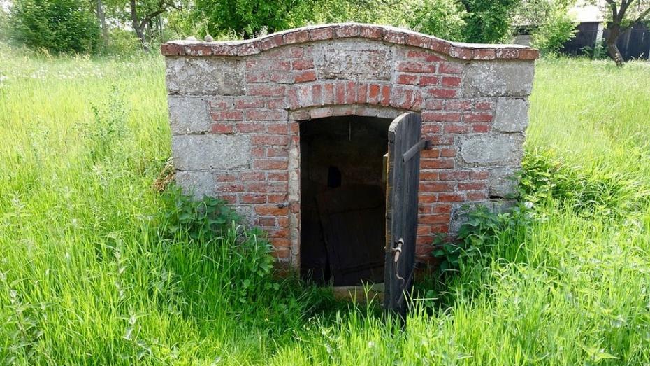 Под Воронежем отыскали мумифицированное мужское тело, якобы уехавшего назаработки