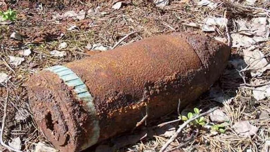 Кантемировец, нашедший в поле проржавевшие снаряды, получит от полиции денежное вознаграждение