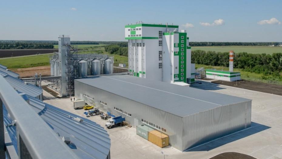 В Воронежской области заработал современный комбикормовый завод
