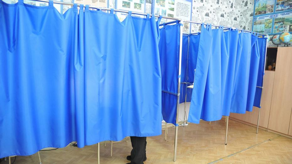 В единый день голосования выборы в Воронежской области пройдут в 10 районах