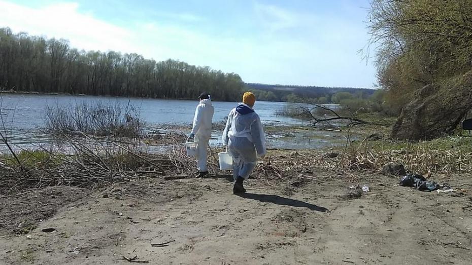 В Павловском районе приступили к обработке территорий от комаров