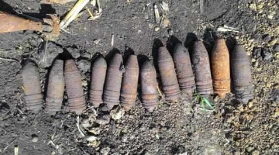В Рамонском районе уничтожили 48 боеприпасов времен ВОВ