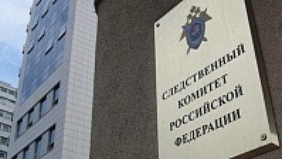 Уголовные дела по фактам угроз губернаторам Воронежской, Белгородской, Курской и Брянской областей объединят в одно производство