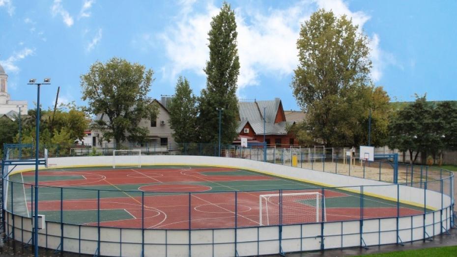 В Воронежской области построят 11 спорткомплексов открытого типа