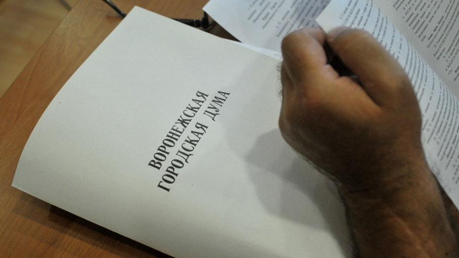 Депутаты воронежской гордумы урезали себе зарплату на 10%