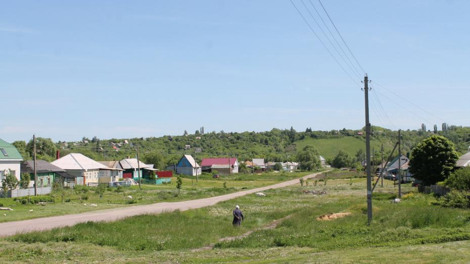 В Хохольском районе установят более 2 тыс фонарей