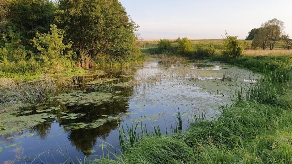 В Острогожском районе за 2 дня утонули 3 человека