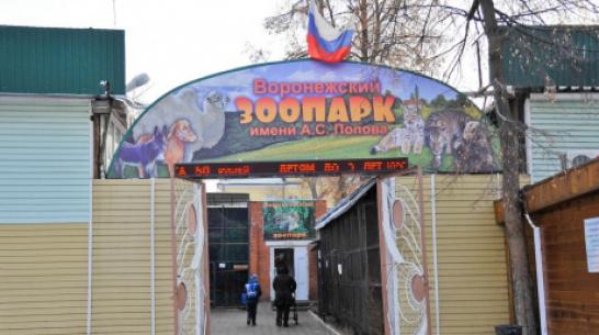 Воронежцы смогут получить билет в зоопарк в обмен на помощь в уборке