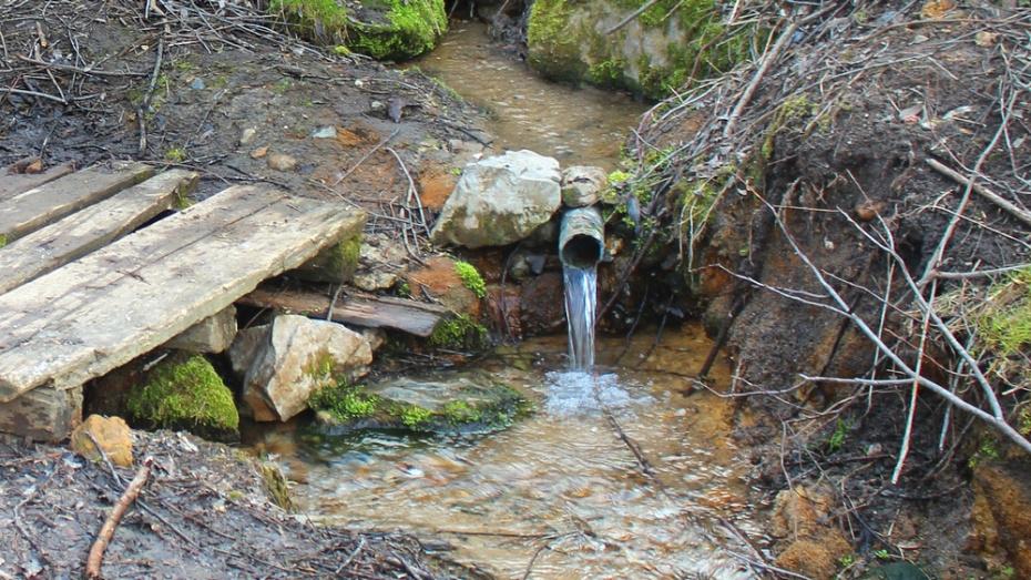 Семилукские журналисты запустили экоакцию «Напиться воды и не отравиться»