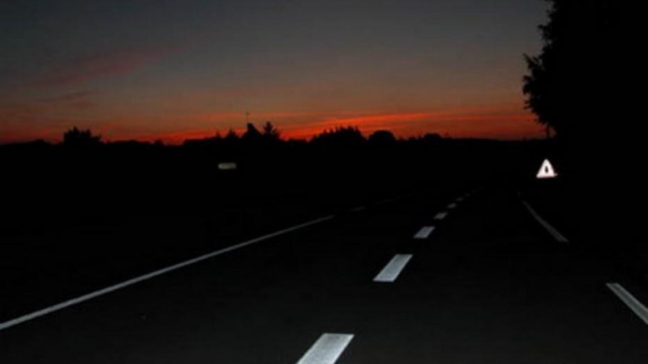 23-летний шофёр ЗИЛа насмерть сбил 80-летнего мужчину наворонежской трассе