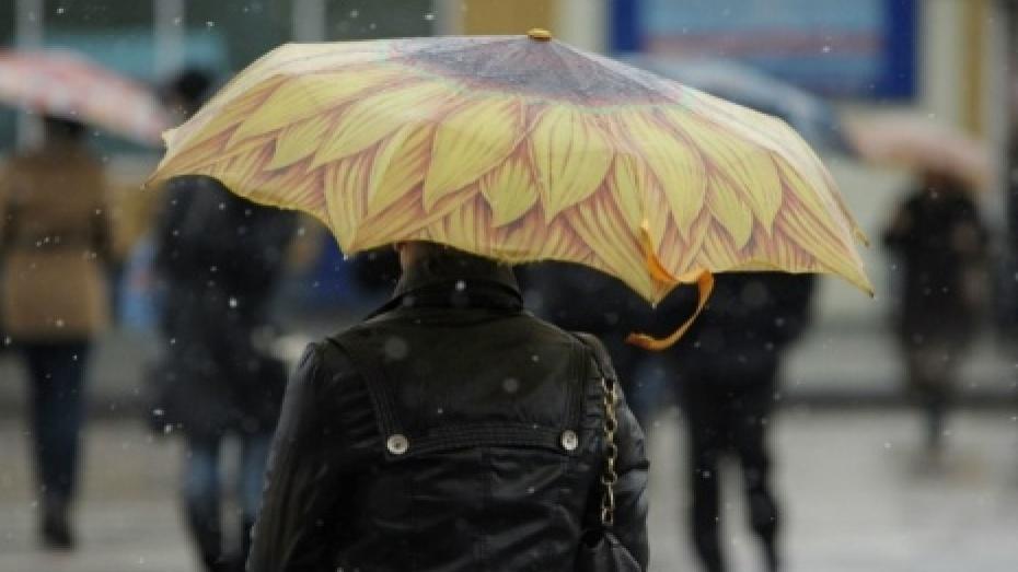 Выходные будут теплыми идождливыми— Погода вКирове