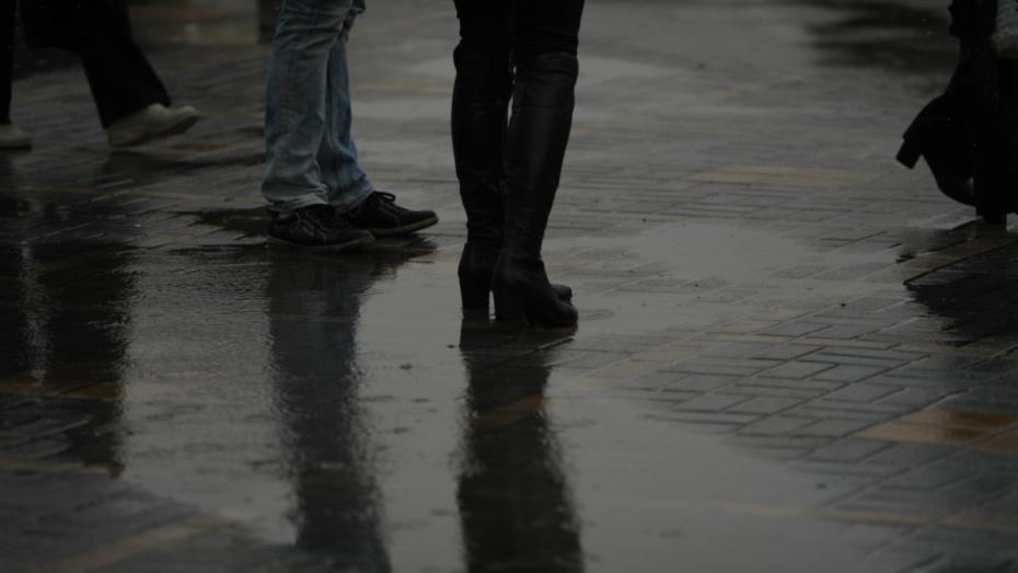 На нерабочей неделе в Воронеж придут дожди и похолодание