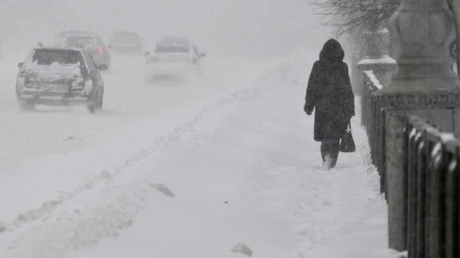 Спасатели предупредили воронежцев о сильном ветре и метели 26 и 27 января