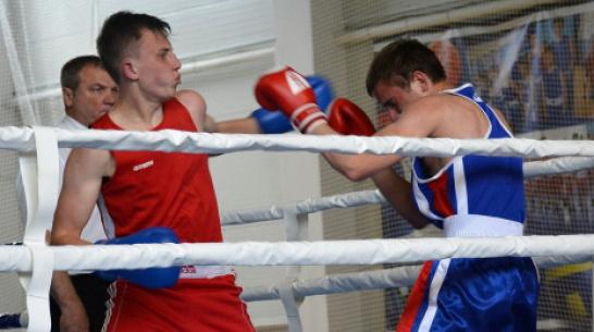 В Кашире VII областной турнир по боксу «Пересвет» пройдет с 16 по 18 мая